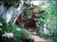 Entrada de la vegetada Cueva del Buxu